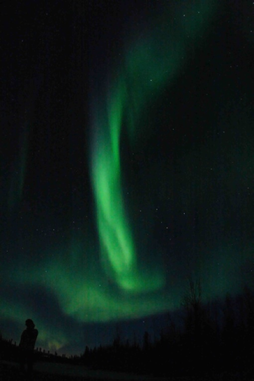 aurora yoshiroweb1.jpg